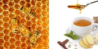 7 Amazing Health Benefits of Honey Top 2016 Tips