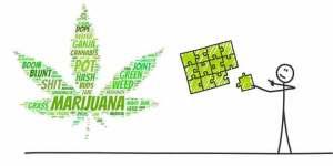 marijuana_brain_performance_660x330px