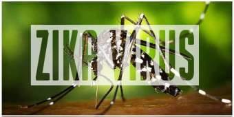 zika_virus_660x300px