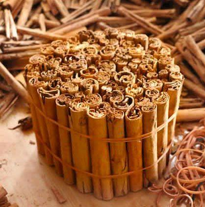 cinnamon-pack-350x350