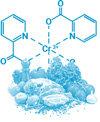 chromium-picolinate-phenq-ingredient-100x122
