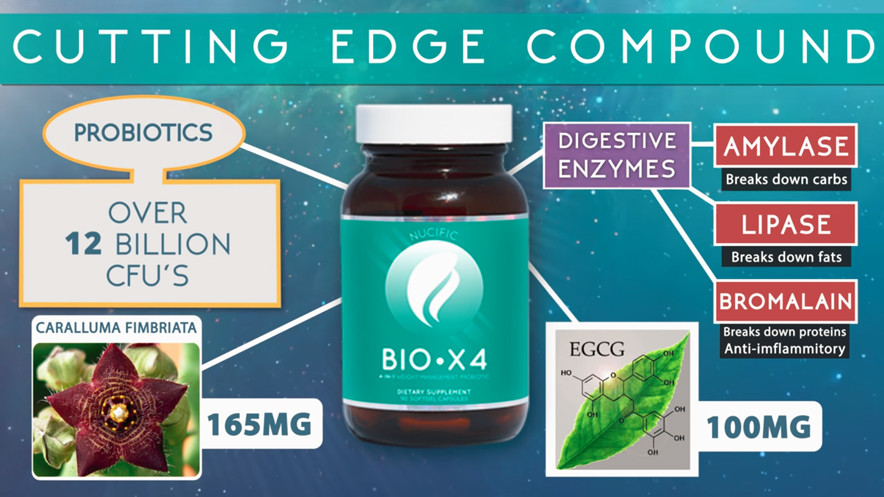 Nucific BIO X4 Probiotic Review: Mechanism of Action