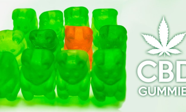 CBD Gummies Reviews: Cannabidiol Infused Gummies Overview
