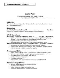 Example Combination Resume Resume Sample