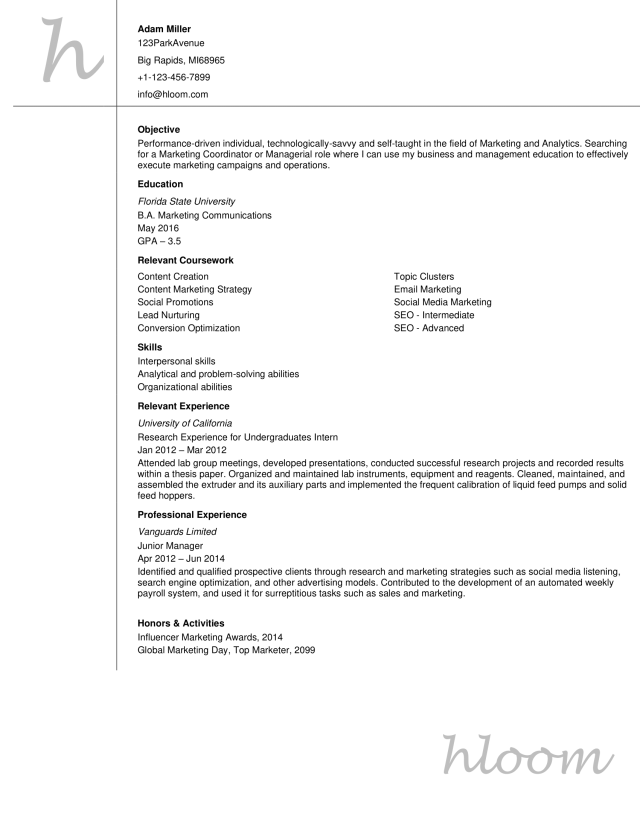 Entry Level Resume Examples  Hloom
