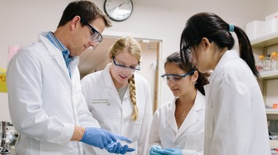 Students working hard in the lab