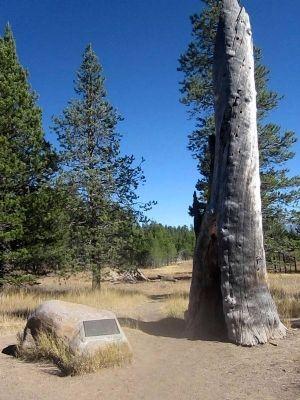Donner Camp Site Historical Marker