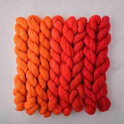 Appletons Orange Red 441 – 448 - 8