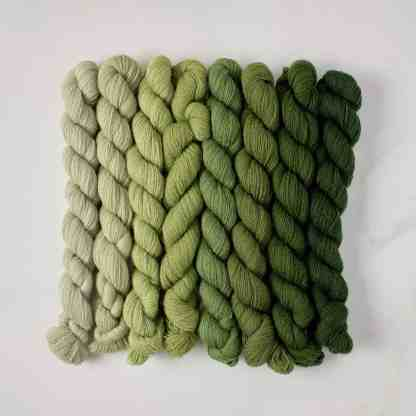 Appletons Early English Green 541 – 548 5.6