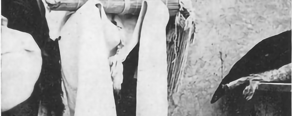 Native American (Hopi) Traditions – Rituals & Ceremonies: Wedding Ceremony