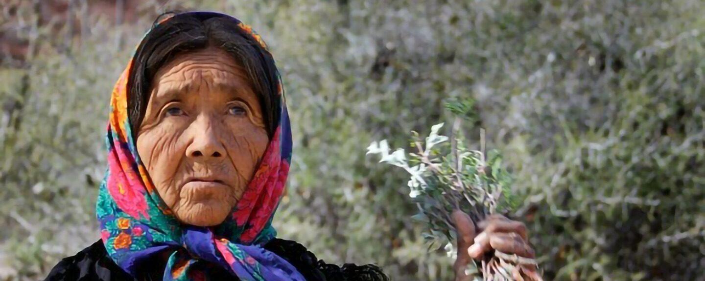 Religious Spiritual Ceremonies Among Hmong And Native American