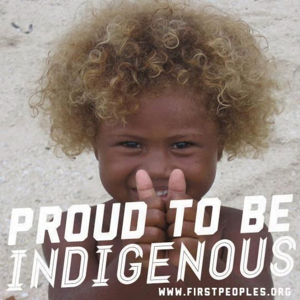 Who Are Indigenous People?