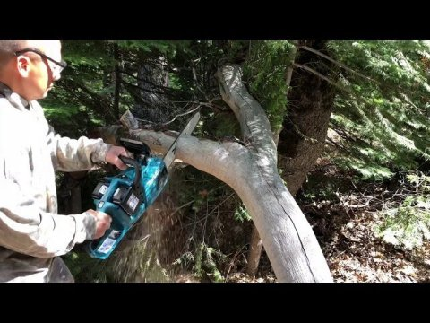 Hmong California deer hunting first week opening 2019