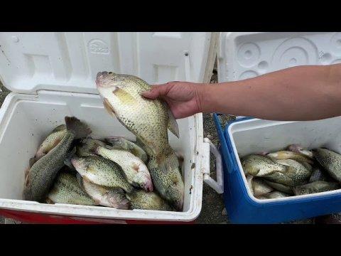 Hmong Sacramento fishing (East park Reservoir 5/15/2020)