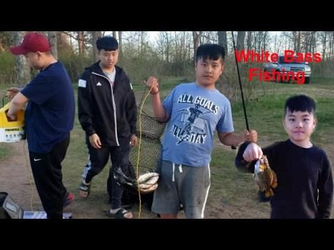 Hmong wisconsin white bass fishing/mus nuv ntse dawb
