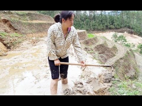 Khám phá ruộng bậc thang mùa nước đổ - Các cô gái hmong đắp bờ ruộng