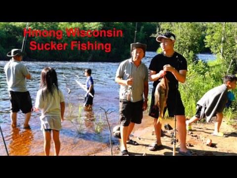Hmong WI Sucker Fishing/Nuv Ntses Sucker Nyob Meskas 6/27/20