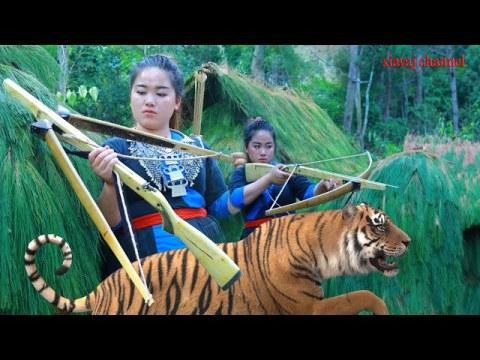 shoot a tiger by hmong primitive bow siv rab hneev txawv txawv tua tsov loj kawg