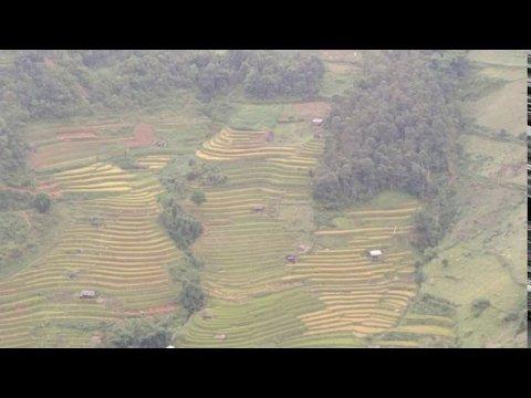 Toj siab chaw tshua - hmong mu cang chai