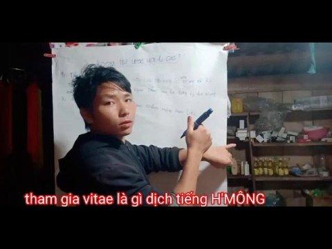 Tham gia vitae là gì dịch tiếng H'MÔNG