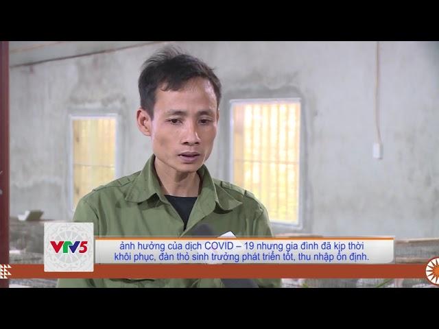 [TIẾNG MÔNG] MÔ HÌNH NUÔI THỎ CHO THU NHẬP CAO Ở XÃ HÀ LAI, HUYỆN HÀ TRUNG | VTV5