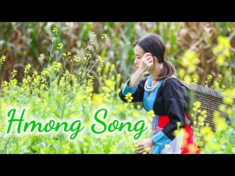 Hmong Song - Nkauj Hmoob Nkauj Tus Siab Kho Siab Zoo Mloog Heev