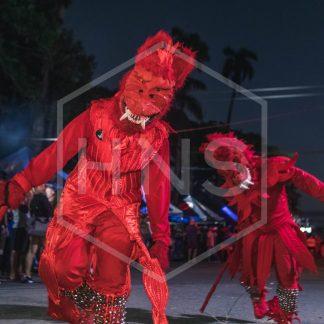 Bocas del Toro Carnival Devils