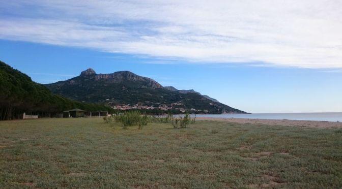 Sardinie jarní – doplnění