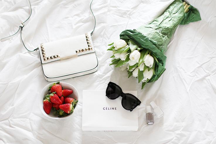 Céline_Audrey_Sunglasses_1