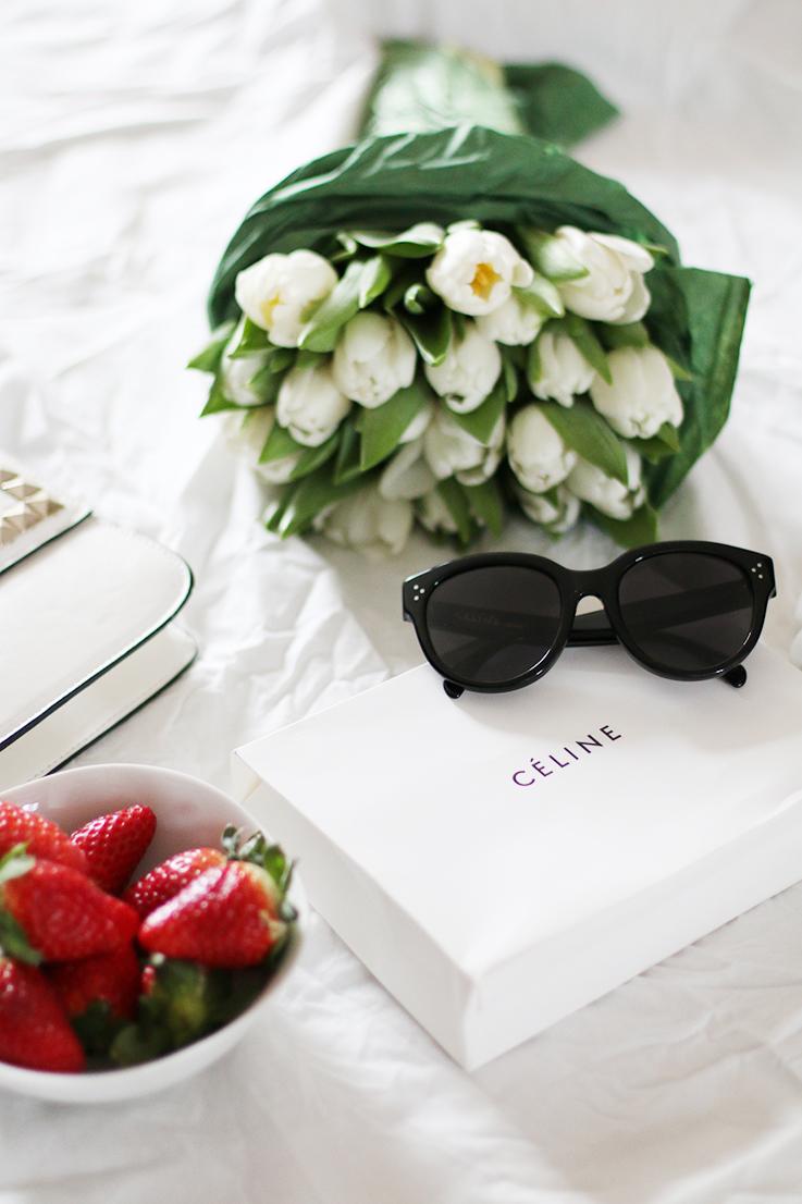 Céline_Audrey_Sunglasses_3