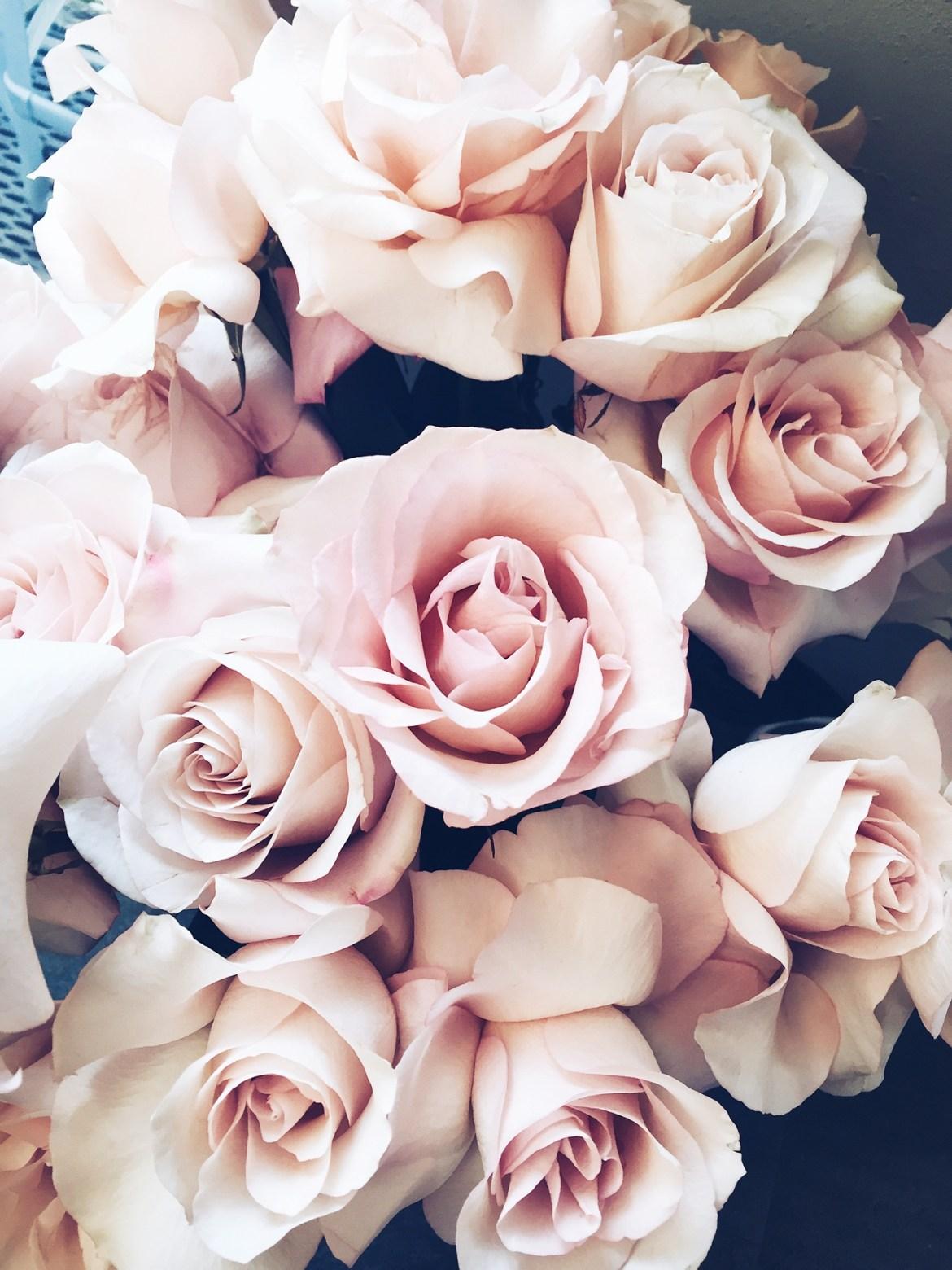 7things_4_roses