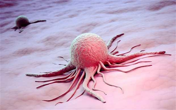 Latest Cancer Information from Johns Hopkins – Facts Analysis