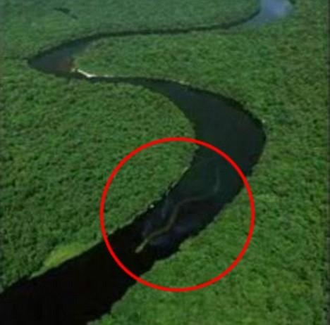 Picture about World's Biggest Snake of 100 Feet found in Amazon River Basin