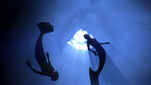 Picture about Animal Planet's Documentary Video, Mermaids, The Body Found