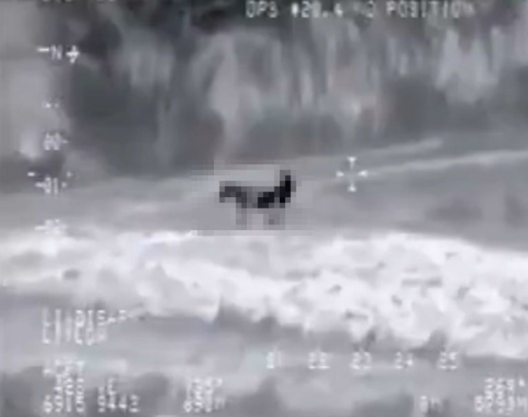 Picture about US Drone Captures ISIS Militant Having Sexual Intercourse with Donkey