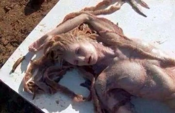 Picture about Mermaid (Jalpari) Found Dead at the Beach of Indian Ocean