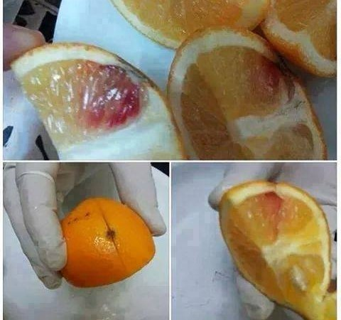 Algeria Recovered Large Quantity of HIV-Blood Injected Oranges: Hoax