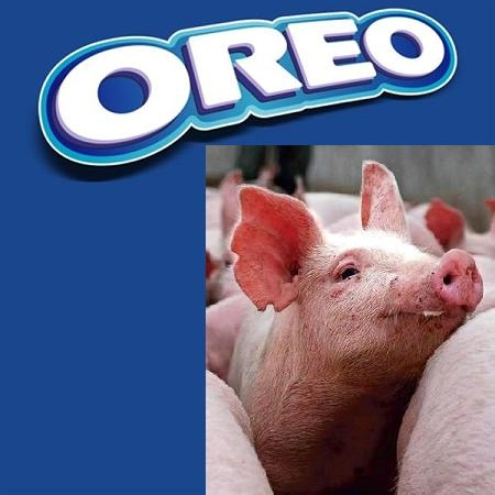Picture Warning Oreo Cookies Contain Pork