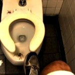 Picture about Giant Spider Under Public Toilet Seat, Video