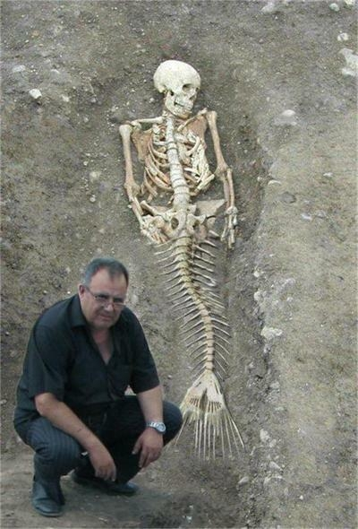 Picture about Mermaid Skeleton Found in Bulgaria