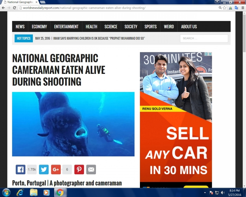Screenshot of article on World News Daily Report website