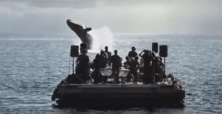 Picture of Orchestral Musicians Play Beautiful Music in the Middle of Sea and Bring Whales to Surface