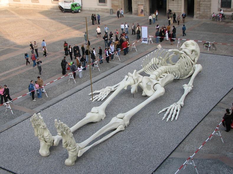 "Image of 28 Meters long skeleton sculpture named ""Calamita Cosmica,"" or ""Cosmic Magnet"""