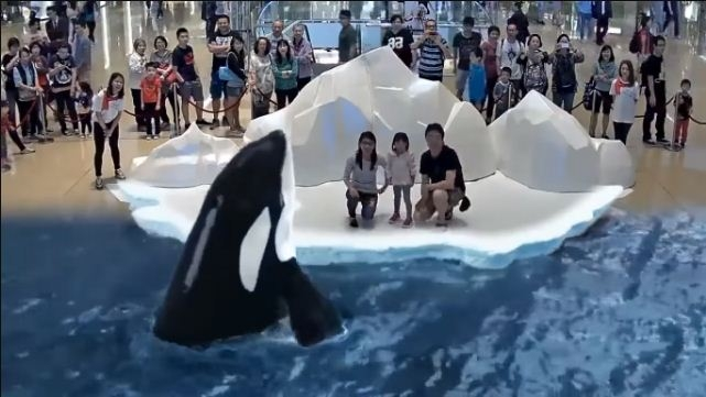 Picture Suggesting to Show 7D Park in Japan to Touch, Feel and Smell the Animals