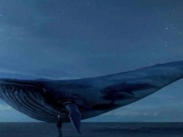 Picture about Blue Whale 'Suicide Dare' Game Inflicting Deaths in Many Teenagers on Social Media