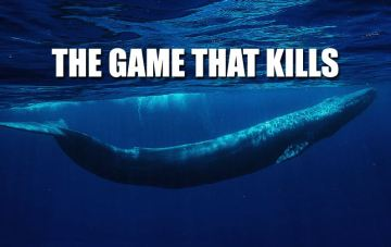 Image about Blue Whale Coming onto WhatsApp Through Phone Call