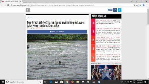 Screenshot of article on React365 website
