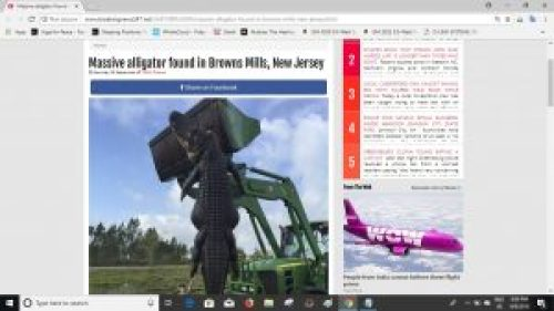 Screenshot of the article on BreakingNews247.net website