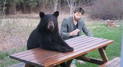 Image of Sad Keanu Reeves Memes