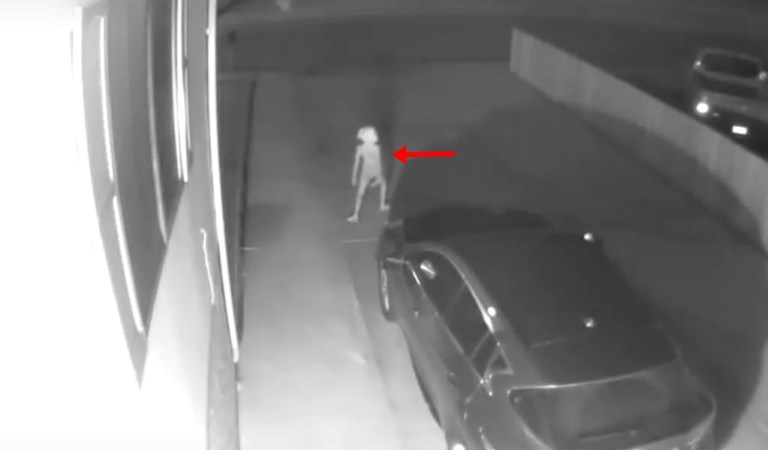 Harry Potter's Dobby Appeared in a Creepy CCTV Footage: Fact Check